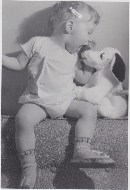 Toy dog.