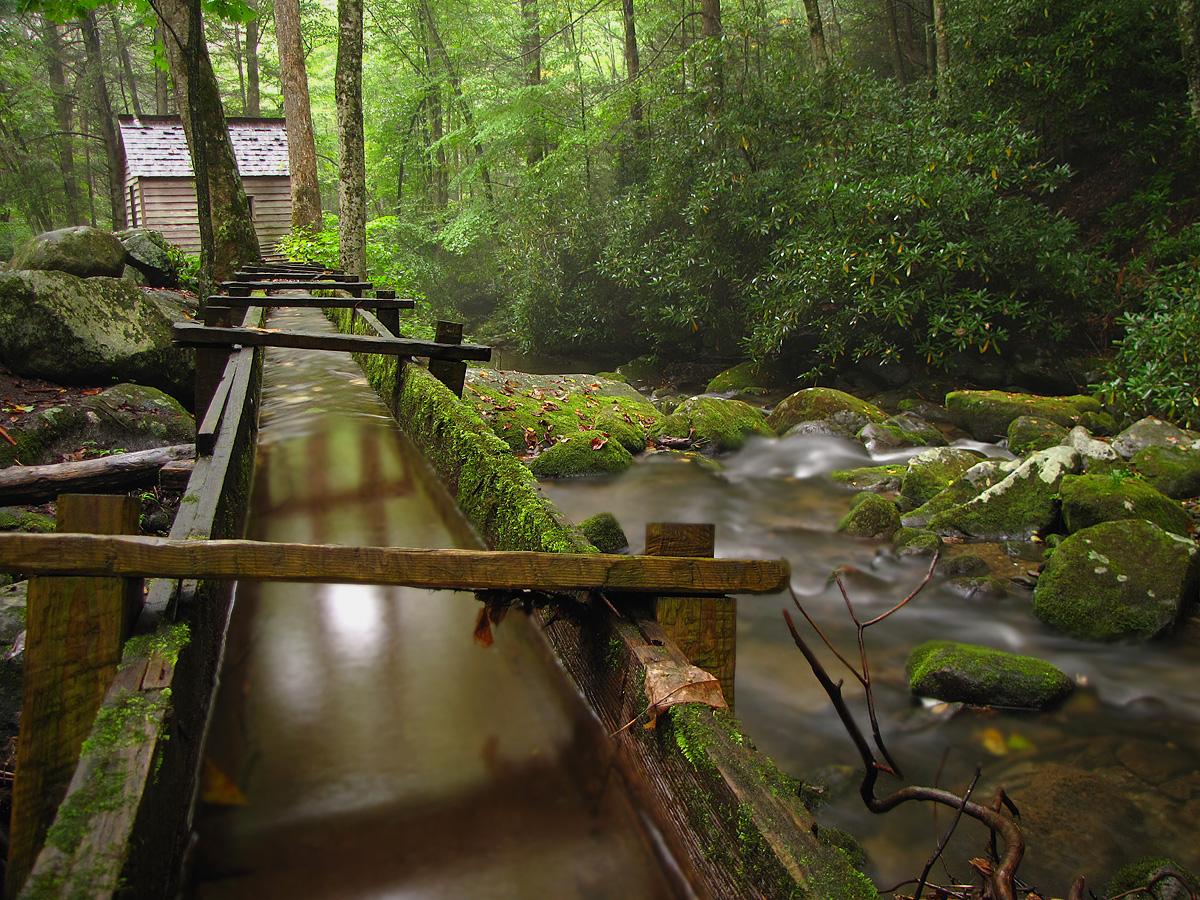 Alfred reagan cabin on roaring fork motor nature trail for Roaring fork smoky mountains