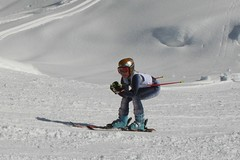 snowboard(0.0), ski touring(0.0), slalom skiing(0.0), telemark skiing(0.0), nordic skiing(0.0), ski equipment(1.0), winter sport(1.0), freestyle skiing(1.0), nordic combined(1.0), ski cross(1.0), ski(1.0), skiing(1.0), piste(1.0), sports(1.0), recreation(1.0), snow(1.0), outdoor recreation(1.0), extreme sport(1.0), downhill(1.0),
