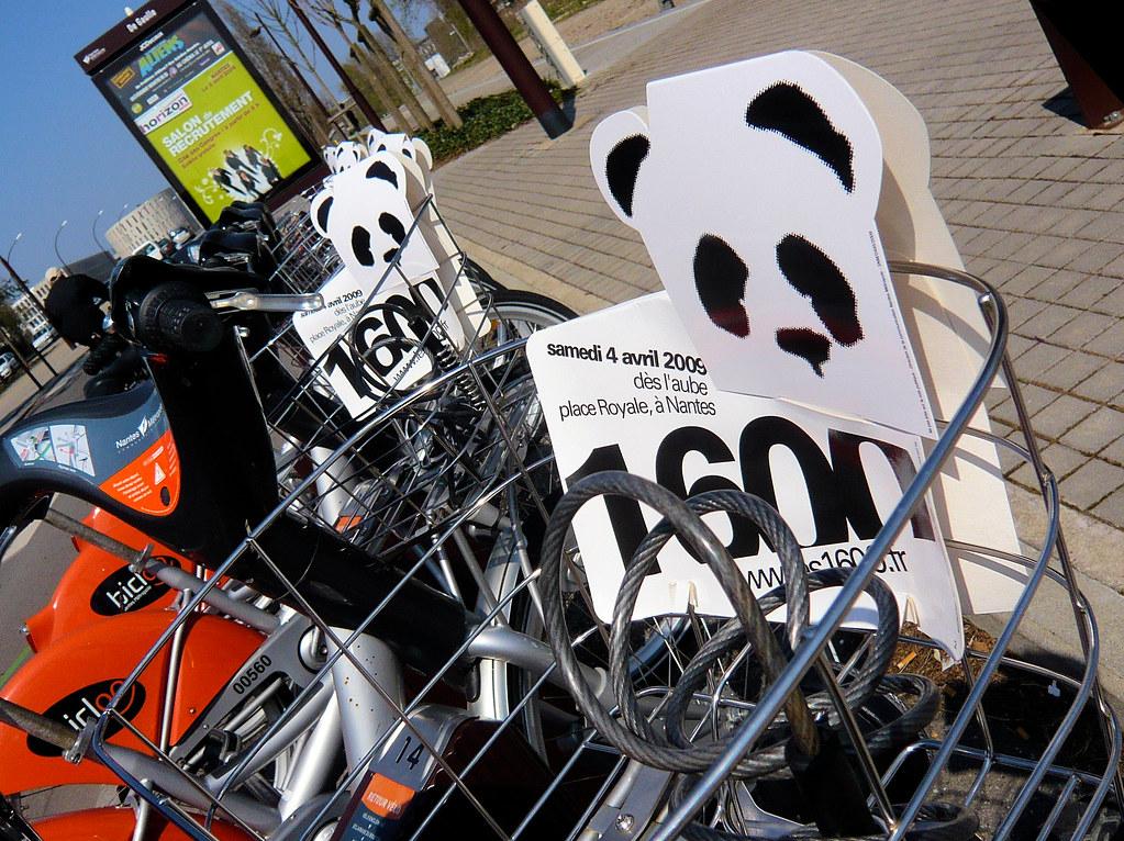 1600 pandas flickr photo sharing. Black Bedroom Furniture Sets. Home Design Ideas