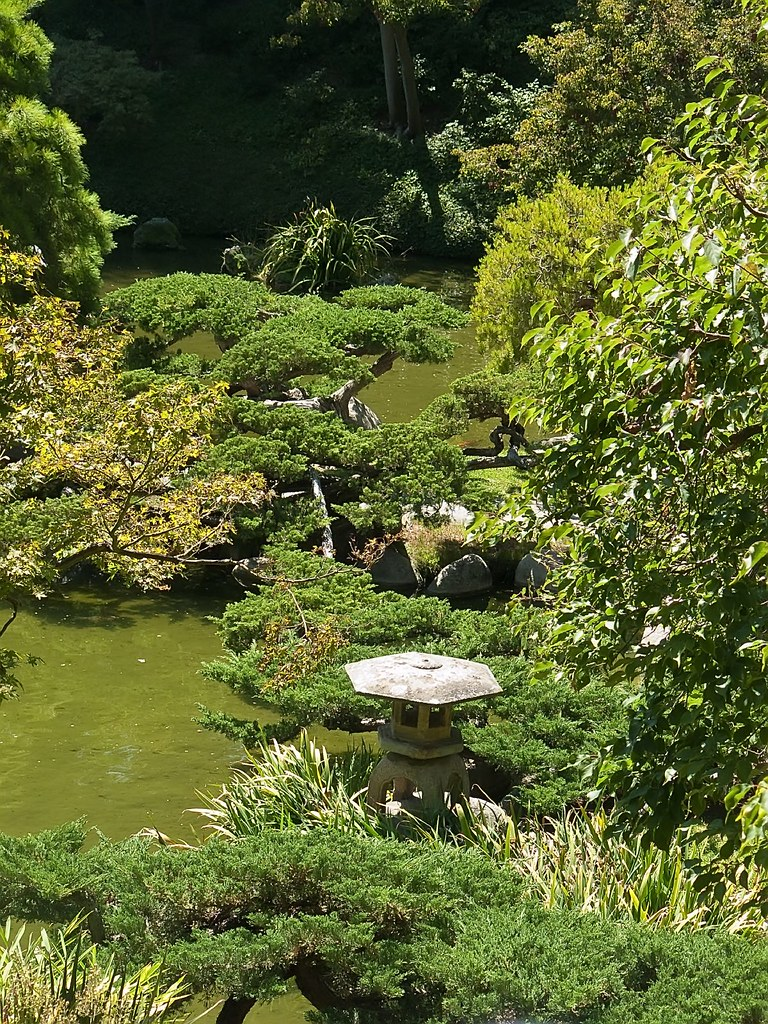 Reflecting pools in japanese garden at huntington gardens for Garden reflecting pool