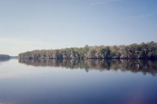 river state manatee springs parkfloridafamilyvacationsuwanee