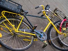 Bicycle crash #2