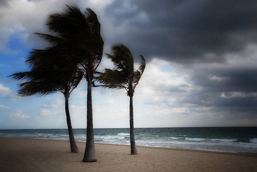 Top Ten Windiest Places On Earth Pm Press Everything News