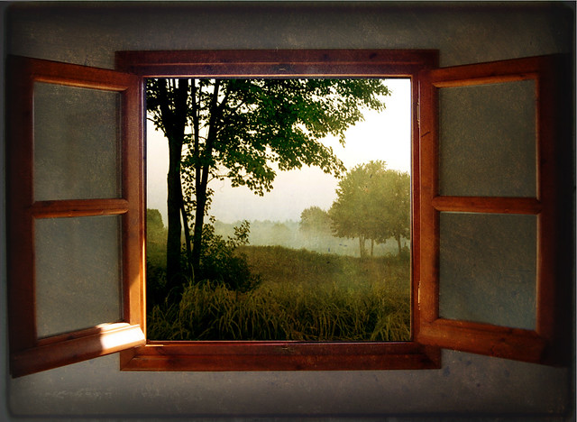 Through A Window Flickr Photo Sharing