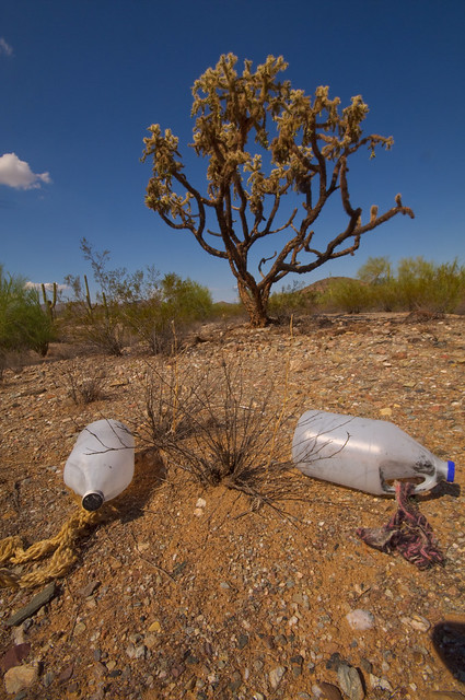 Desert Water Bottles | We found these in the desert strewn ...