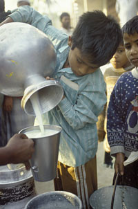Measuring milk for sale in India