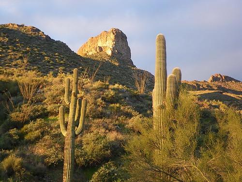 ranch arizona mountains southwest clouds sunrise landscape hiking nationalforest saguaro tonto sonorandesert hikes cavecreek blackmesa tontonationalforest elephantmountain flickrsbest spurcross アリゾナ州 azhike alhikesaz intphoenix