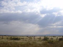 Cerca de Samalayuca