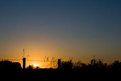 Coucher de soleil / IMG_3491