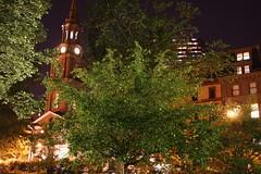 christmas decoration(0.0), christmas lights(0.0), christmas tree(0.0), christmas(0.0), branch(1.0), landscape lighting(1.0), tree(1.0), light(1.0), night(1.0),