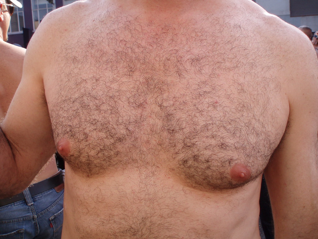 HOT & HAIRY BEARMAN CHEST ! ~ FOLSOM STREET FAIR 2009 ! ( safe photo )