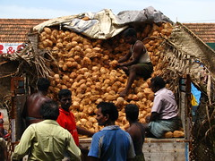 India - Koyambedu Market - Faces 30