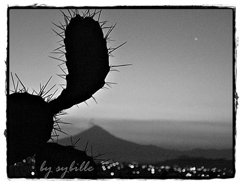 Tradiciones de mi bella Puebla