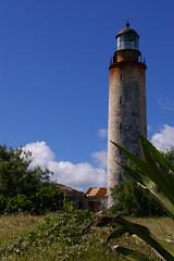 Barbados, 2008