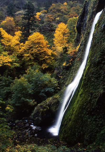 starvation creek falls, fall, Nikon FM