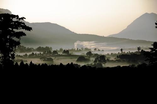 morning mist sunrise dawn malawi mulanji photocillin lujeri