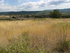 prairie, land lot, steppe, ecoregion, field, ranch, shrubland, plain, hill, natural environment, meadow, landscape, wilderness, pasture, rural area, savanna, grassland,