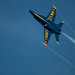 Blue Angels 2009
