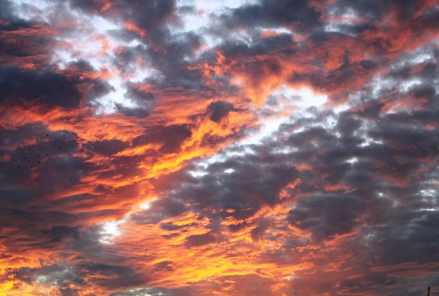 Remarkable Sunset Clouds