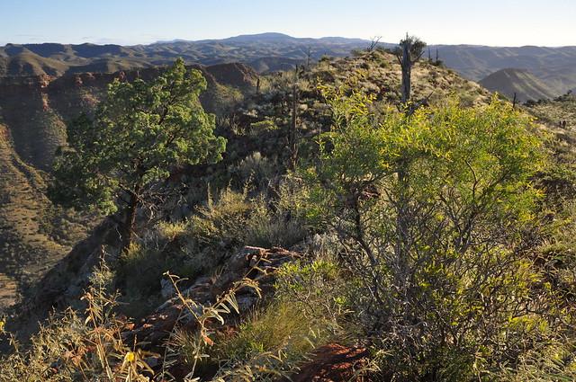 arkaroola 2011 - c acacia ridge ba