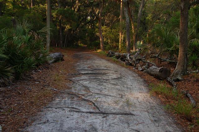 Skidaway Island State Park Savannah Tripomatic