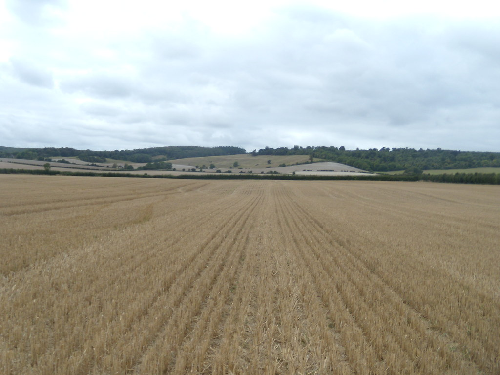 Big field Wye Circular