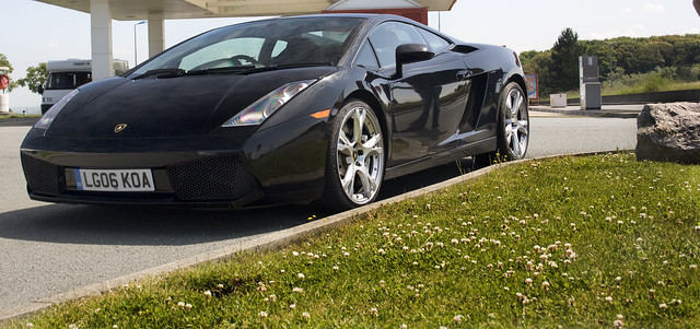 Header of Gallardo
