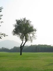 Beijing Taiwei Golf Club