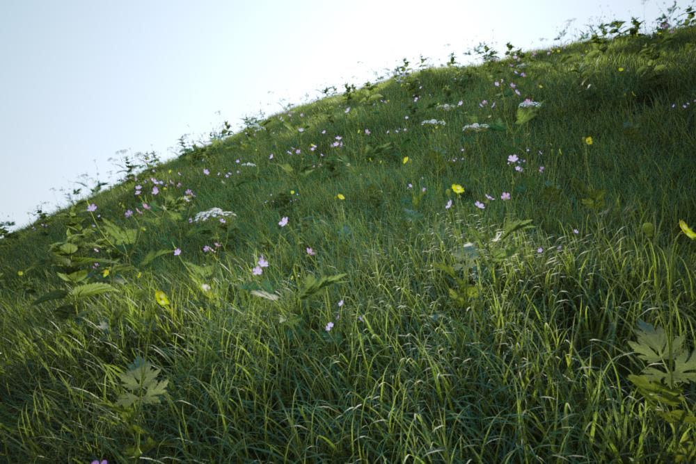 field-vrayscatter