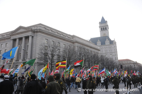 Flags - Washington DC, USA