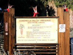 #6935 Coachella Valley Preserve