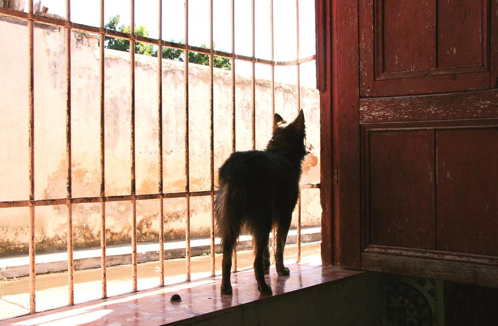 Colonial style window, Trinidad Cuba