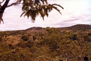 Malangali landscape