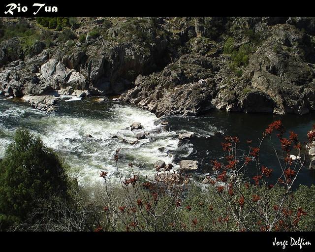 rio tua 1