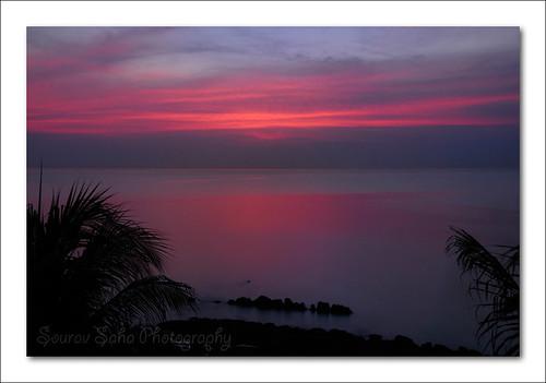 sea india color colour water digital sunrise dawn nikon rocks palm nikkor dslr soe andaman d80 portblair abigfave impressedbeauty vosplusbellesphotos