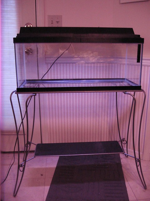 20 gallon long tank hood stand flickr photo sharing for 15 gallon fish tank stand