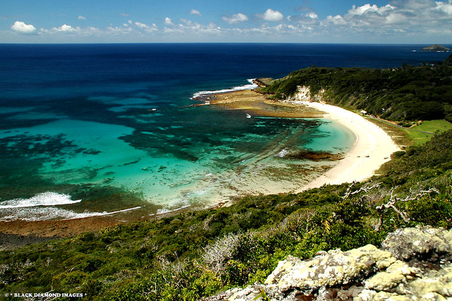 Neds Beach From Malabar Hill - Lord Howe Island