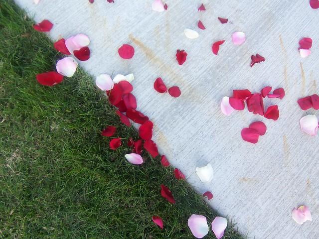 sendoff petals
