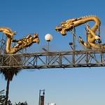 Metro Gold Line Art Tour 066
