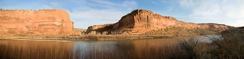 water colorado coloradoriver redrock blm westerncolorado mcdonaldcreek rabbitvalley rubyhorsethief knowlescanyon wildhorsemesa blackridgecanyonswilderness mcinniscanyonsnca