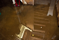 basement flooding flickr photo sharing