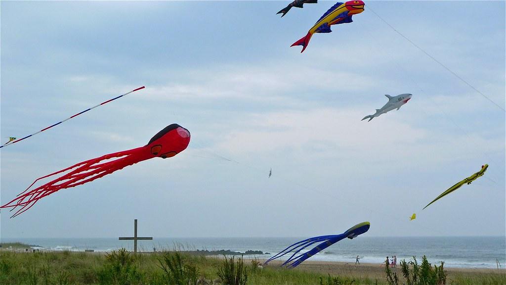 Flying Kites!