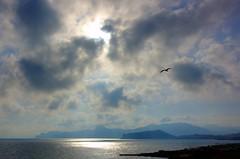 Крымское небо