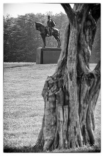 Image of Stonewall Jackson. park bw sculpture tree history monument america military civilwar manassas cypress battlefield equestrian bullrun sesquicentennial 1861 stonewalljackson