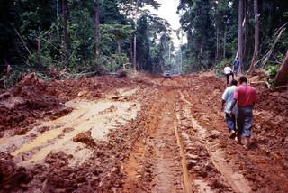 NigeriaScans-1994-06-28