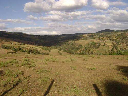 3237239882 e0ea97519b Imágenes frescas de forestación