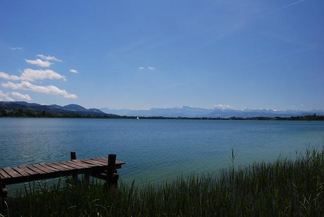 Peaceful summer day at lake pf ffikon pf ffikon zh for Innendekoration pfaffikon zh