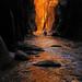 Zion Gold by Jeff Dyck