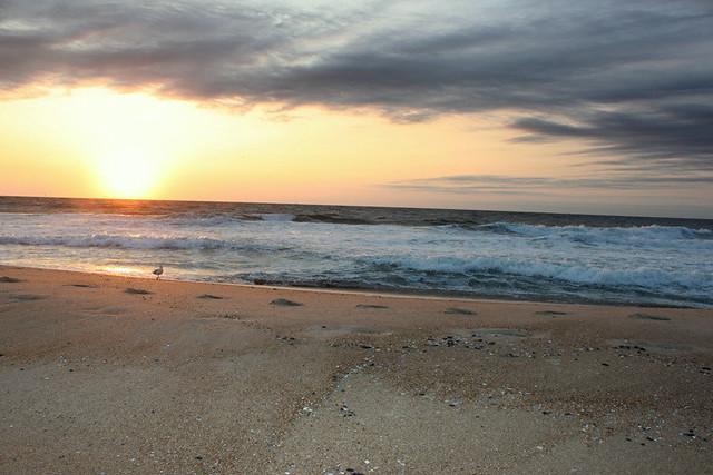 Sea Girt at Sunrise on the Beach